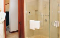 Master bathroom shower stall