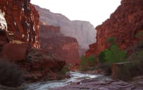 Narrows in Zion Canyon NP - 35 min