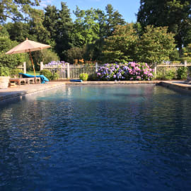 The Pool Out Back