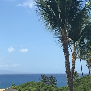 View from the lanai...(close up lens used) Enjoy meals while watching for whales.