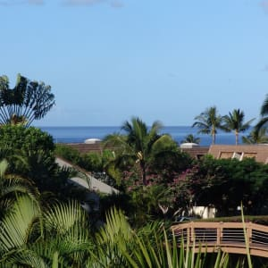 Ocean & Garden View from Large Spacious Lanai. All New A/C's & Major Appliances
