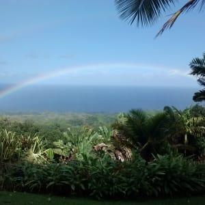 Ocean View Rainforest Cottage