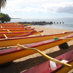 the beautiful outrigger canoes from Kihei Canoe Club - 5 minute walk away