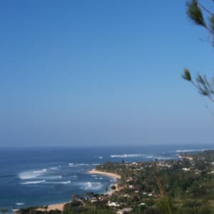 Birds eye view of Sunset Point. Oceanside of the highway. 4 houses from the this beach!
