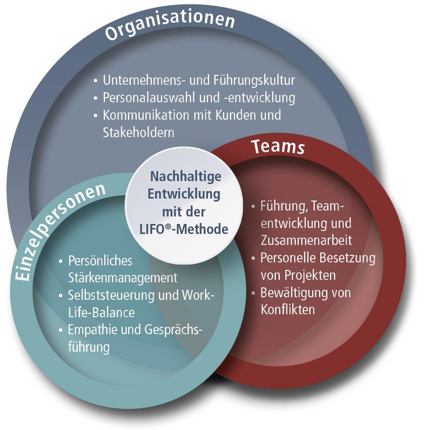 Organisation, Team, Einzelperson