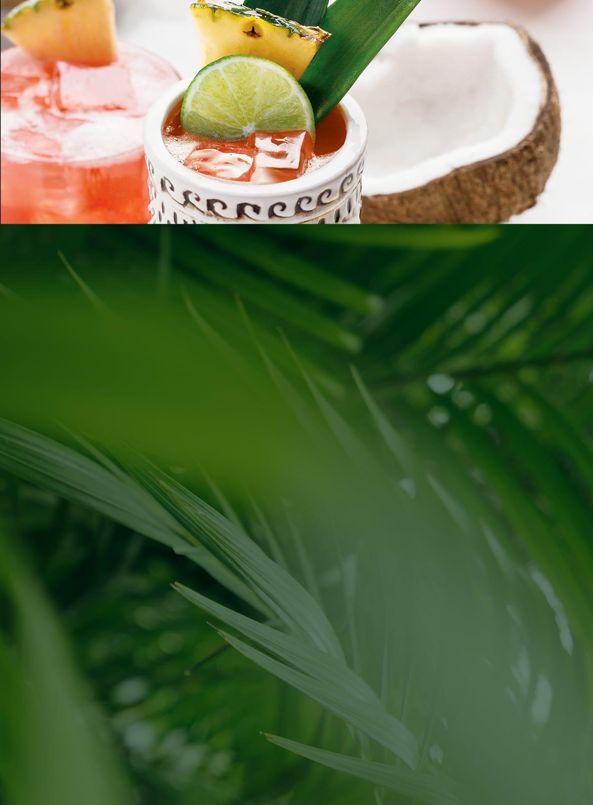 Jungle Bird Recipe Image