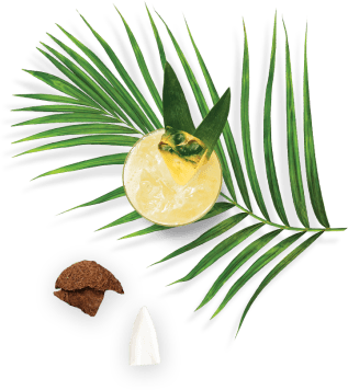 right coconut and drink