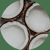coconut bubble v3
