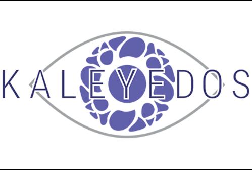 Kaleyedos, founded by Erica Schwarz