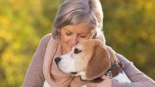 Homewatchers vrouw met hond