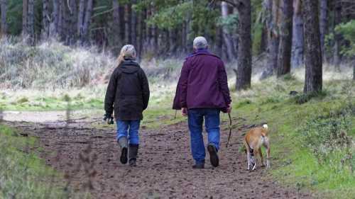 Homewatchers wandelend met hond