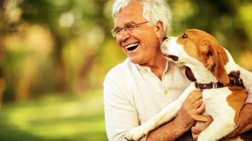 Homewatcher man met hond