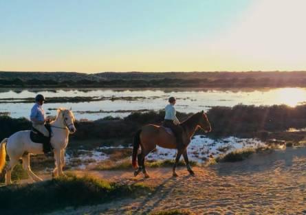 Horse Riding Travel Insurance   JS Insurance