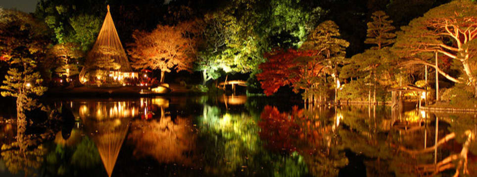 See the Autumn night lightup in a Japanese Garden in Tokyo Voyagin
