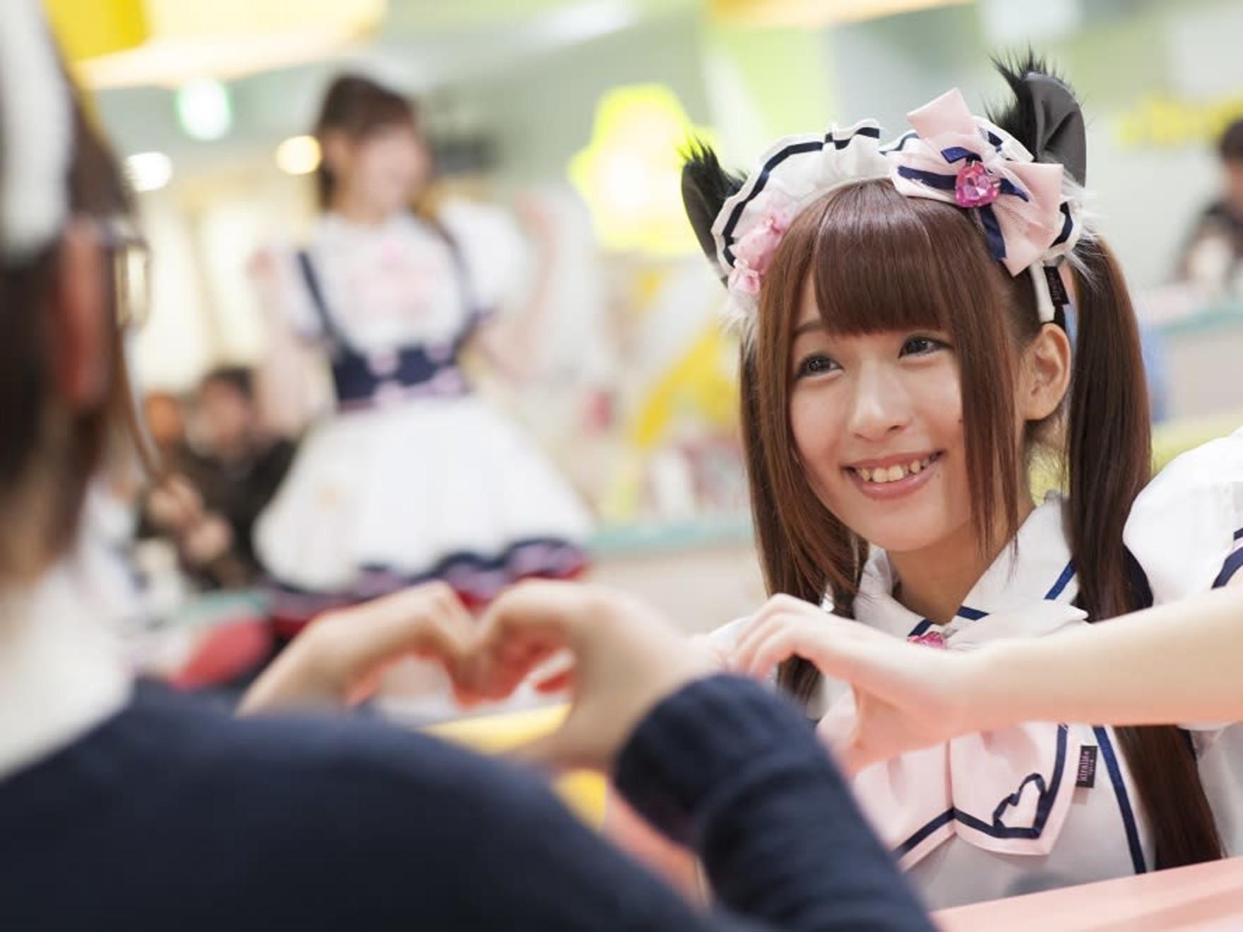 Maid Cafe Maidreamin in Akihabara/Shinjuku/Ikebukuro/Shibuya - 5