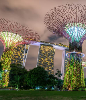34% OFF Gardens By The Bay Singapore And OCBC Skyway Tickets   Voyagin