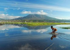 Capture Bali's Beauty with a Professional Photographer