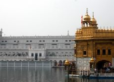 Visit the Golden Temple, India-Pakistan border, and Amritsar