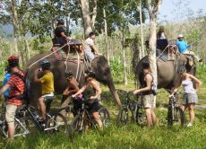 See the Phuket countryside on a half-day bike tour