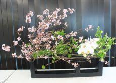 Ikebana: the Art of Japanese Flower Arrangement