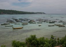 Visit a Seaweed Farm on a Serene Island near Bali