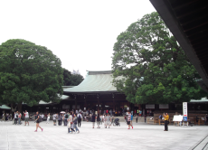 Guided Tour of Shrines and Temples
