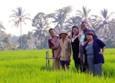 Visit my Hometown and See the Best of Bali too