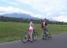 Enjoy a Half Day Bike Ride around Lombok with Locals