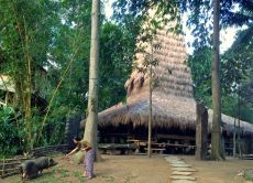 Experience an overnight stay in a Sumbanese bamboo house