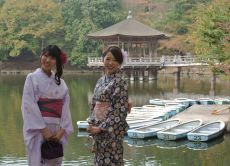 Walk Around Nara in a Kimono