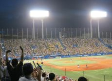 Watch a Japanese Baseball game with a local fanatic