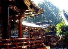 Discover Shizuoka, the city under Mt Fuji!