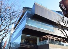 Experience Omotesando's architecture on a guided tour