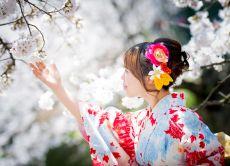 Book a Kimono Rental Hana Plan in Kyoto