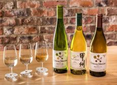 Go on a Katsunuma Wine Tour, home to Koshu wine