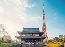 Tour Tokyo's Modern & Traditional Architecture Highlights