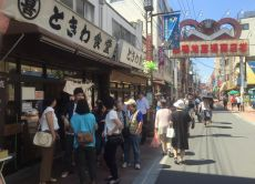 Explore the elderly people's paradise Sugamo, walking tour