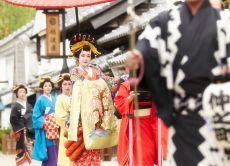 Private charter tour to Nikko & Edo Wonderland or hot spring