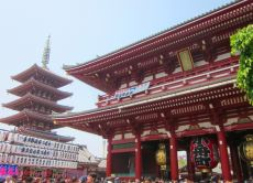 Tour Tokyo's highlights with a private guide in 6 hours