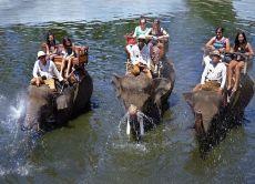 Elephant Trek + Rafting / Cycling / Trekking / Horse Riding