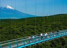 Enjoy the view of Mt. Fuji from a suspension bridge skywalk!
