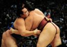 Learn the Mysteries of Sumo from an Expert