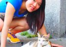 Watch Cats in the Cat Village in Taipei