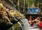 Scenic Ubud & Kintamani Volcano Tour