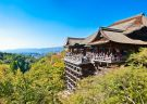 Explore the historical cities, Kyoto and Nara in 1 day!