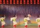 Watch the Kamogawa Odori and Suimeikai Dance Shows in Kyoto!