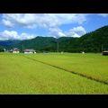 Voyagin Japan Regional Tours (Aizu)