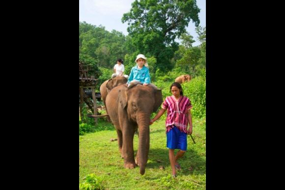 Experience traditional elephant riding with Mahouts - 2