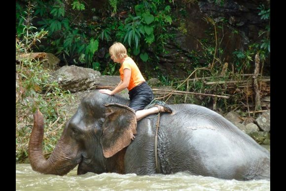 Experience traditional elephant riding with Mahouts - 5