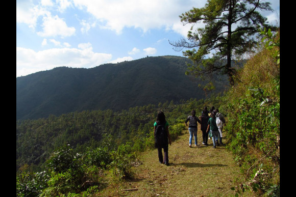 Trek through the Sacred Forests of Meghalaya - 0